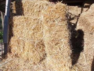 Tvrdobalirana pšenična slama