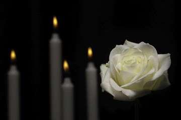 Tekstovi za čitulje, govori za sahrane i pomene