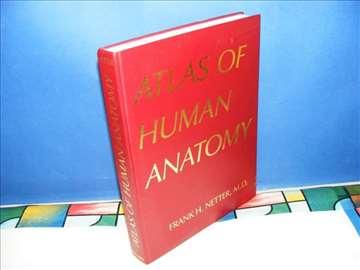 Atlas of human anatomy, Frank H. Netter, M.D.