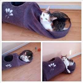 Poklanja se sterilisana trobojna maca