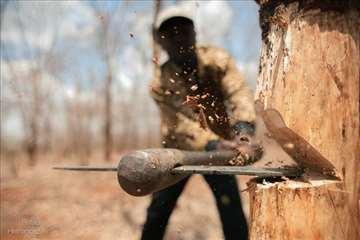Ogrevno drvo povoljno