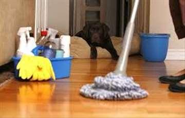 Čišćenje stanova, kvalitetno i povoljno