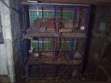 Kavez za zečeve