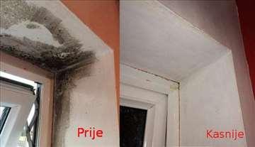 Buđ na zidovima-čišćenje