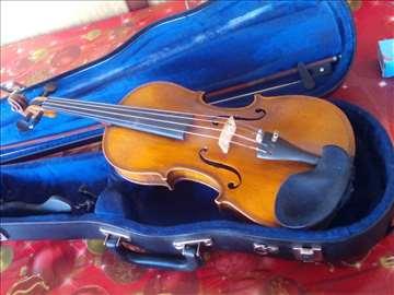 Violina homolka