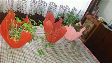 Betonske Ukrasne Vaze (saksije)