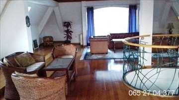 Luksuzna vila u Zemunu, Pregrevica