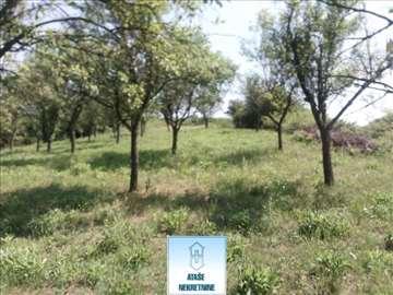 Barajevo, Guncati, poljoprivredno zemljište ID#370