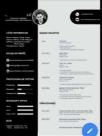 Izrađujem CV na srpskom i engleskom jeziku