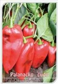 Seme paprike (Palanacko Cudo)