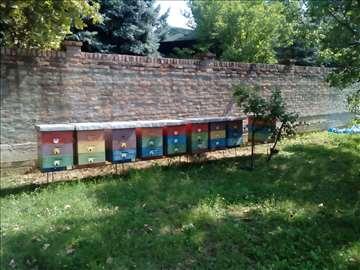 Prodajem pčelinja društva u Fararovim košnicama