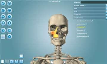 Atlas anatomije na PC-u