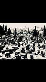 Čišćenje i održavanje grobnih mesta