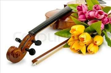 Privatni časovi violine i solfeđa