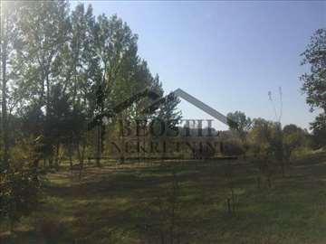 Smederevo - Zlatno brdo - 72m2+6.5ari ID#3574