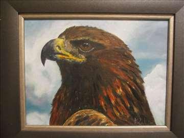 Pogled orla 2, ulje