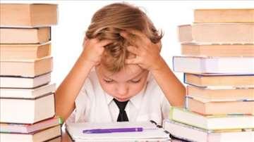 Podučavanje, stvaranje radnih navika, motivacija