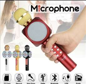Karaoke-Bluetooth Mikrofon sa radijom