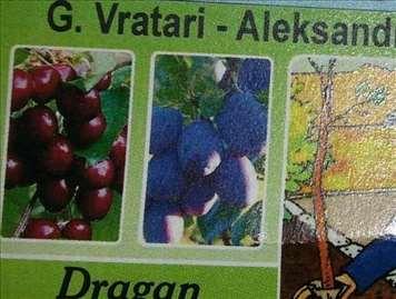 Prodaja sadnica