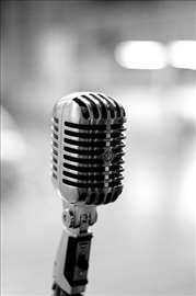 Časovi pevanja, klavira i muzičke teorije