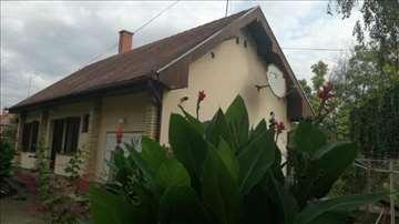 Srbobran, Centar, Dve kuće u oazi zelenila