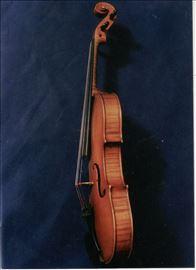 Violina bohemija
