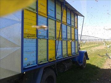 Prodajem pčele na ramu, AZ standard