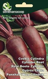 Cvekla cilindrična seme