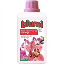 Blumi orhideja