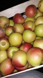 Prodajem jabuke sezona 2018