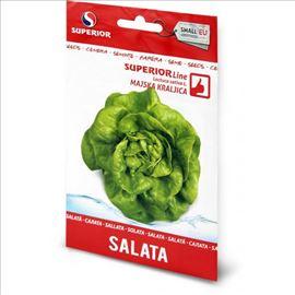 Salata MAJSKA KRALJICA seme