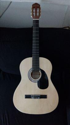 Moller gitara