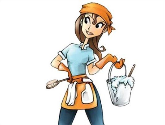 Čišćenje stanova, kuća i sređivanje dvorišta
