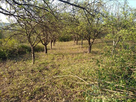 Košenje trave, šišanje žive ograde i seča drveća