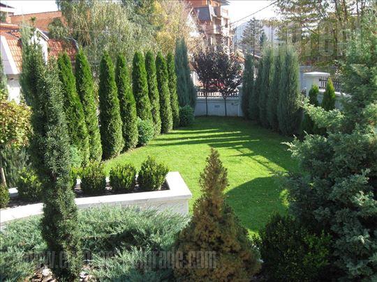 #30571, Izdavanje, Kuća, VOŽDOVAC, 1800 EUR