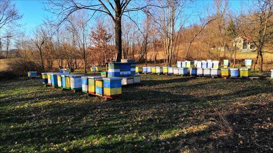 Pčelinja društva u LR košnicama