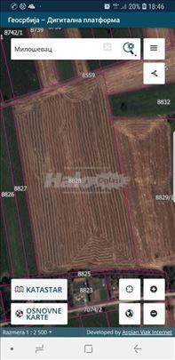 njiva-poljoprivredno zemljiste
