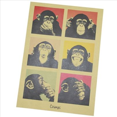 Poster Majmuni