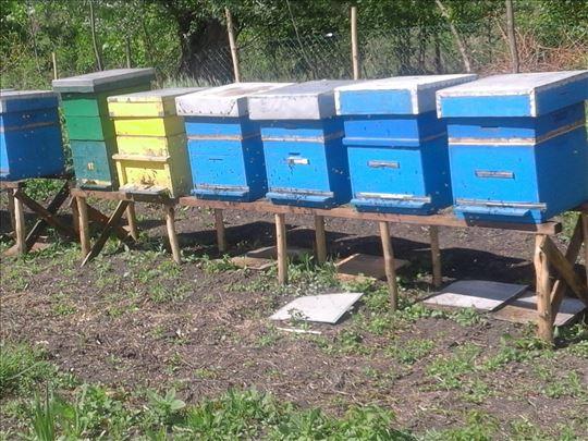 Rasprodajem pčelinjak