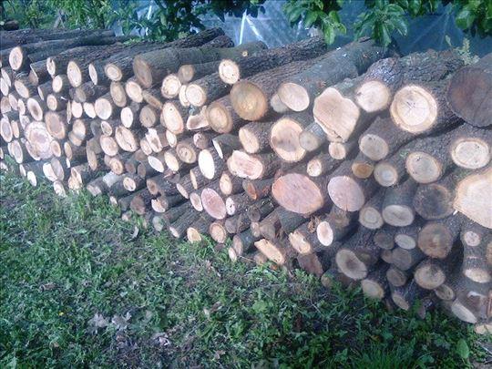 Prodajem ogrevna drva 60m3-hrast sa propratnicom!!