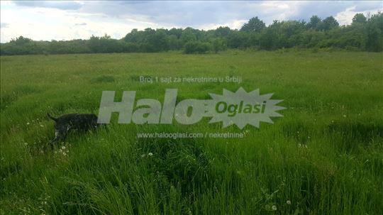 Poljoprivredno zemljište 4,3ha Ub - Paljuvi