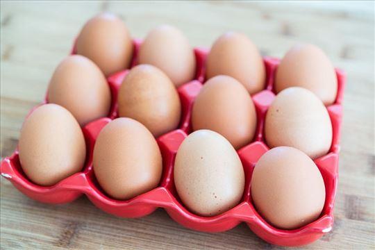 Prodaja jaja susex zivine