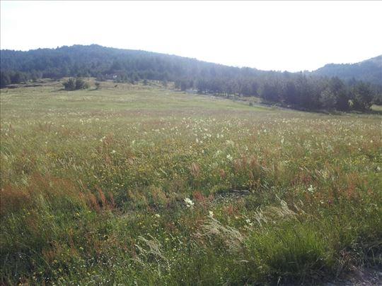 Tometino polje, Divcibare, 1,38 ha
