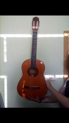 Klasična gitara, Cimar no.341
