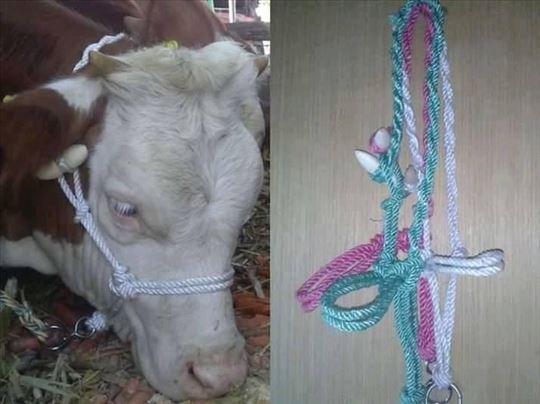 Ulari za krave i konje