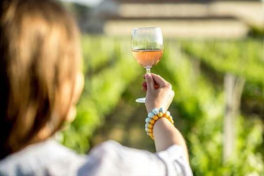 Prodaje se vinarija sa vinogradom i restoranom
