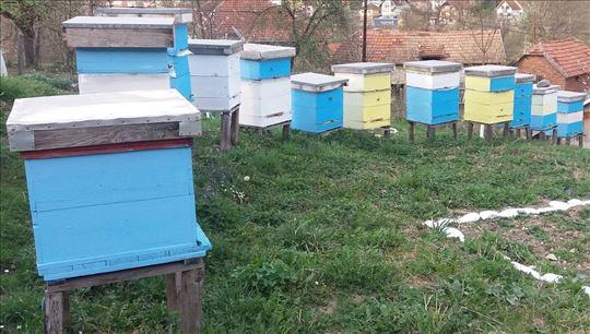 Pčelinja drušva na prodaju
