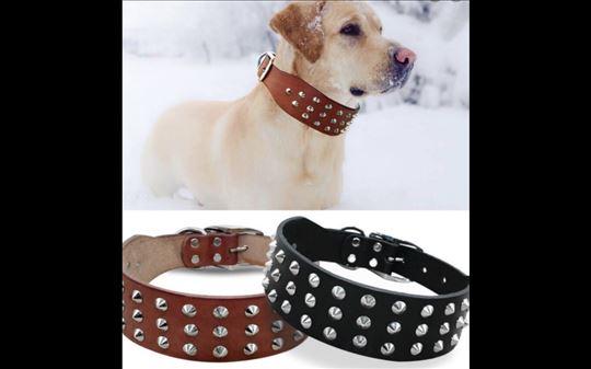 Ogrlice za pse 100% KOŽA BESPLATNA DOSTAVA