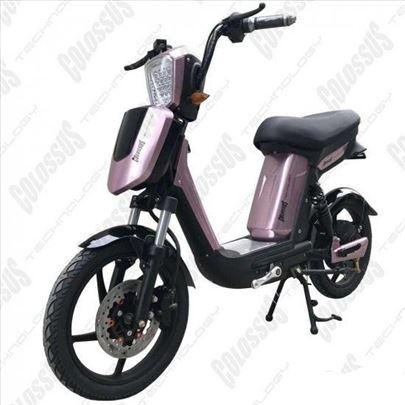 Električni bicikl Colossus-53Q, novo
