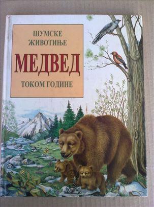 Medved  - Šumske životinje tokom godine